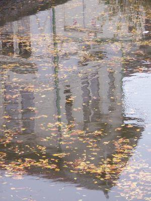 Un automne sous l'eau