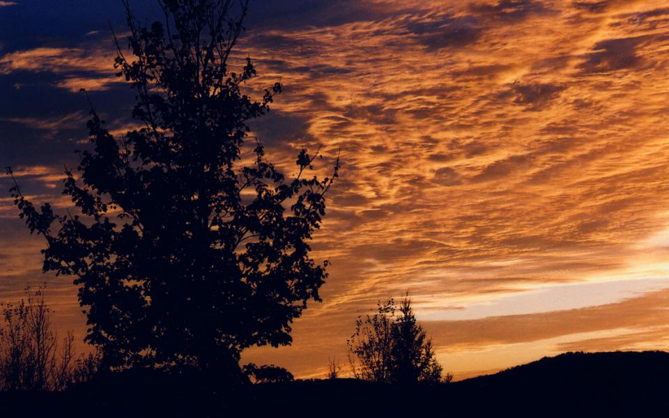 Un beau ciel doré