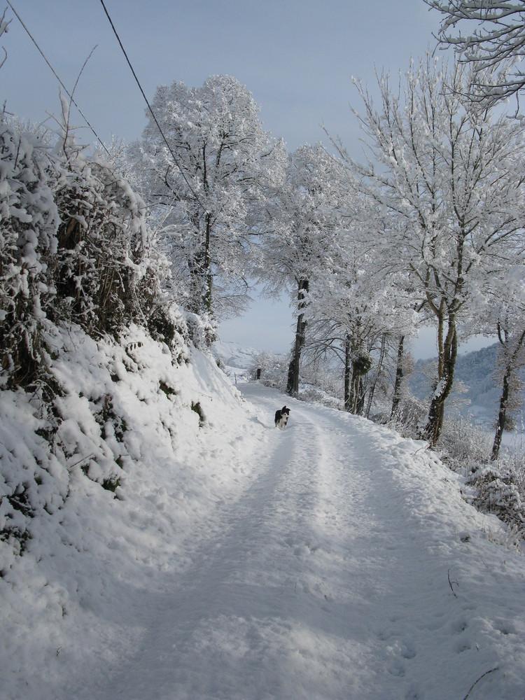un beau mois de décembre