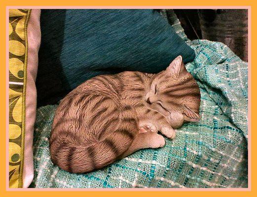 Un bel gattino, ma non vero:-))))...di stoffa .