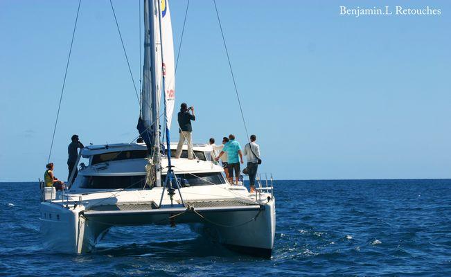 Un catamaran sur les eaux calédoniennes.