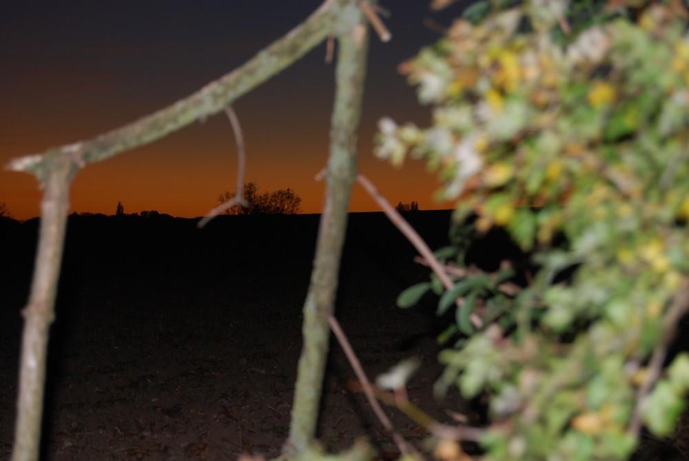 Un champ, la nuit 2