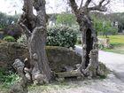 un coin de repos entre les oliviers à Lourmarin