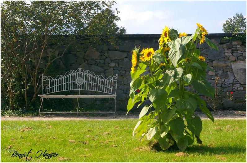 Un coin pour le repos - Parc de Wesserling