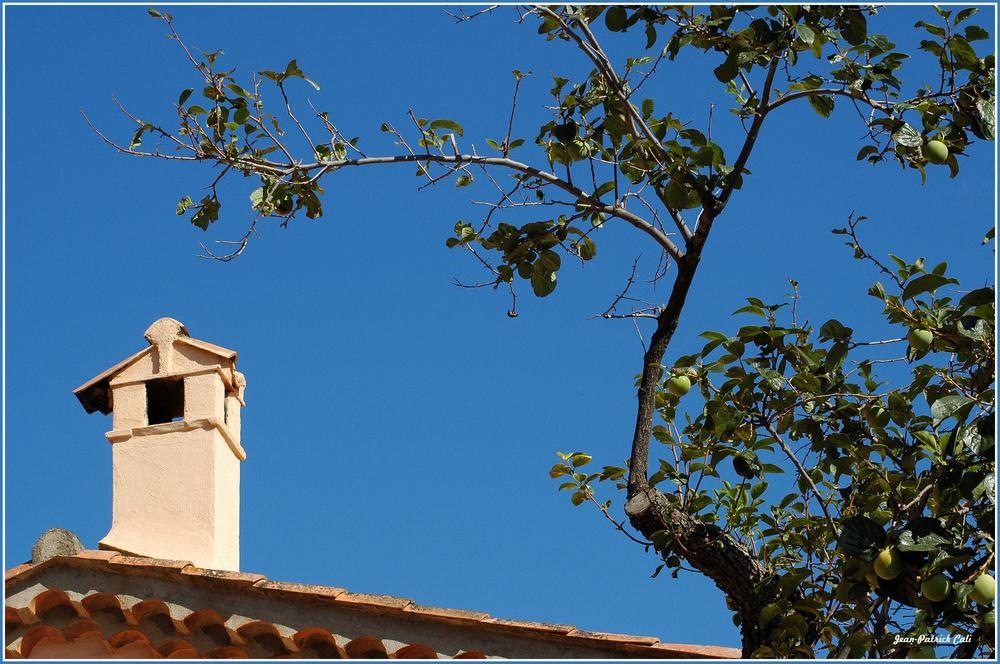 Un Coing de Provence