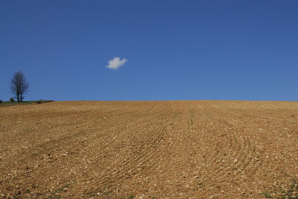 Un desert dans l'arrière pays Niçoit