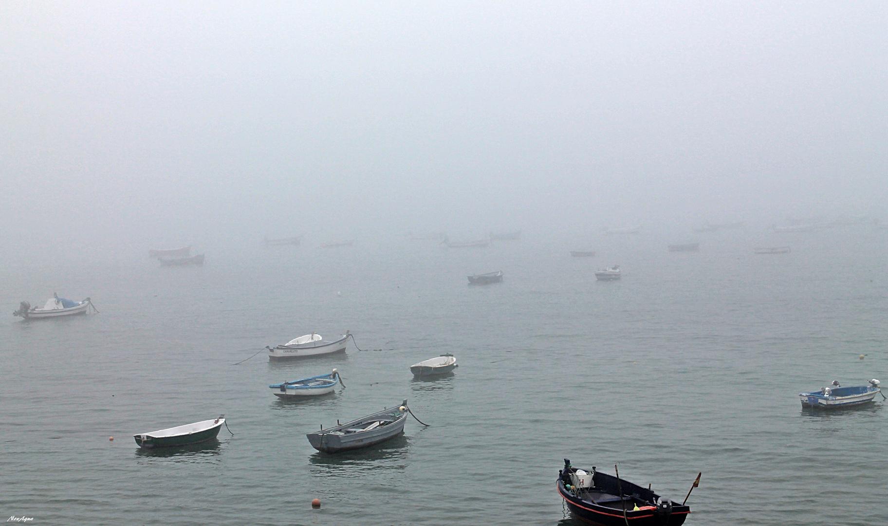 Un día de niebla