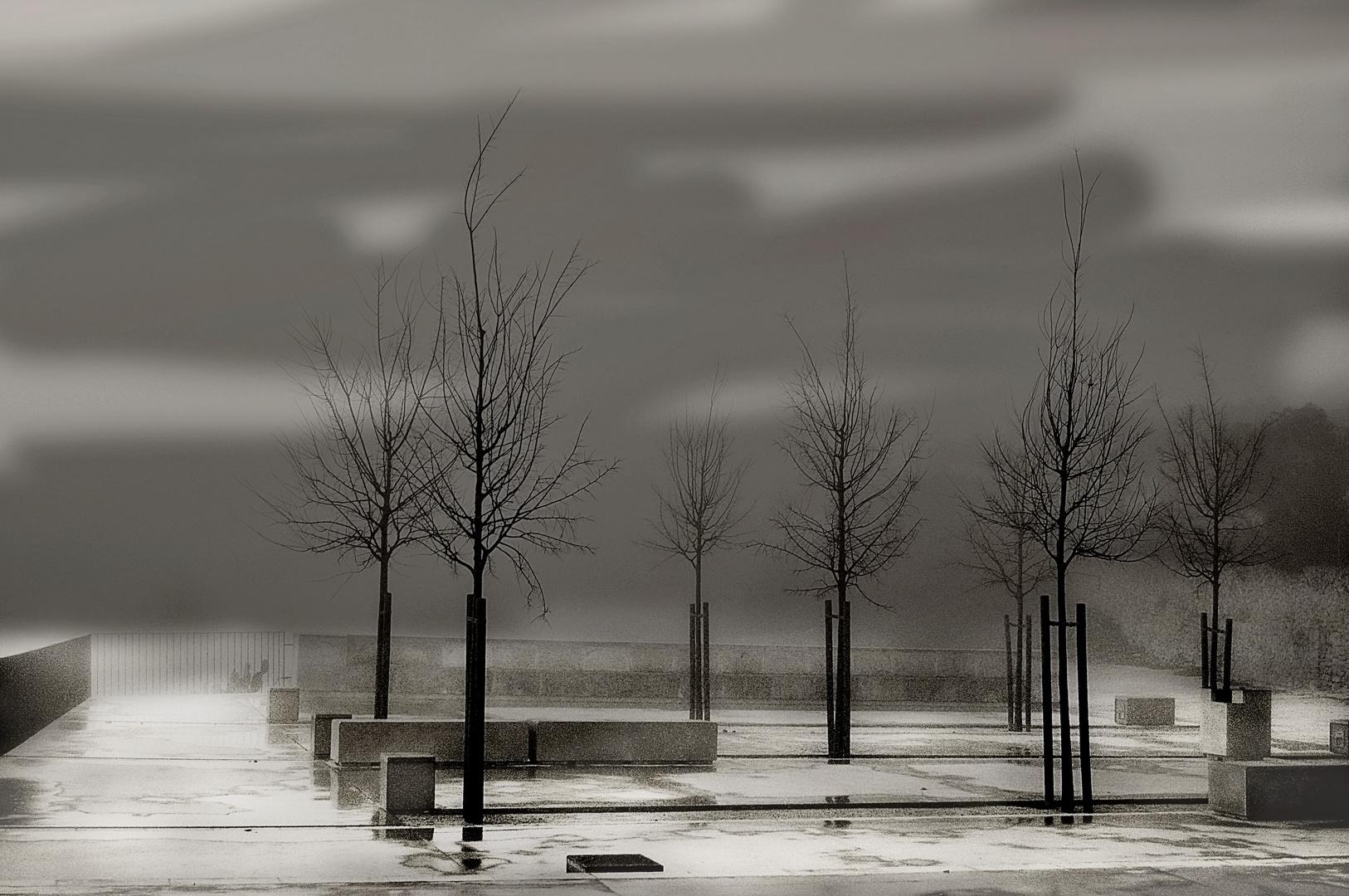 Un día gris....