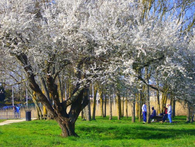 un dimanche de printemps