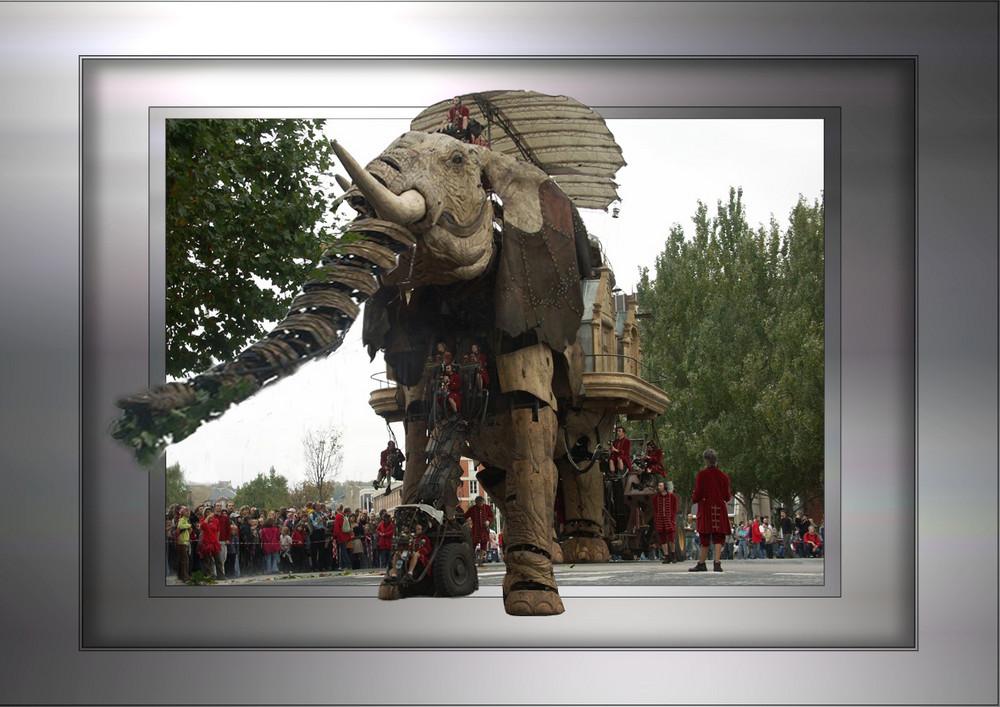 un éléphant dans la ville