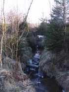 un endroit tres calme berce par l eau