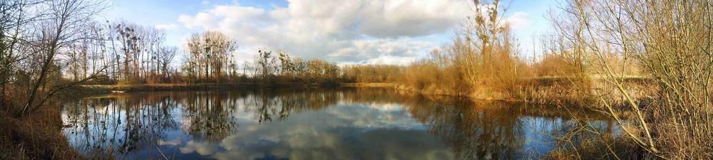 Un étang en Alsace