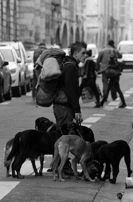 Un homme qui a du chien