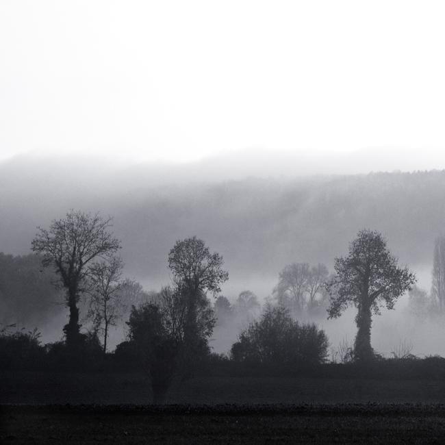 Un jour de brume 1