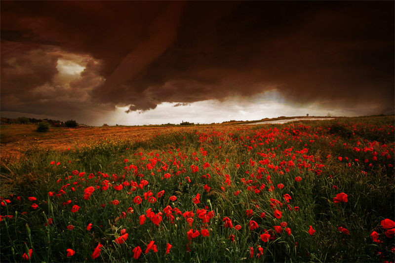 Un jour d'orage