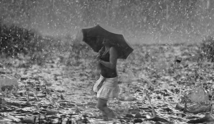 un jours sous la pluie