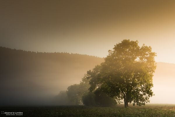Un lever de soleil brumeux
