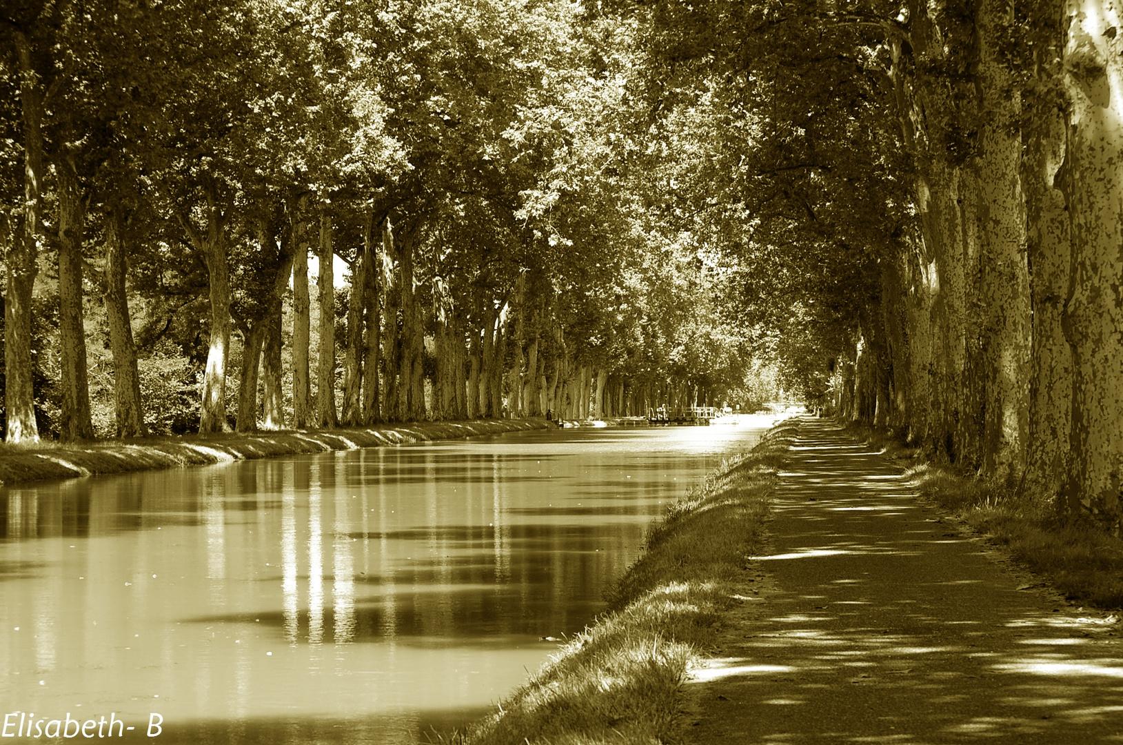 """"""" Un long fleuve tranquille """""""