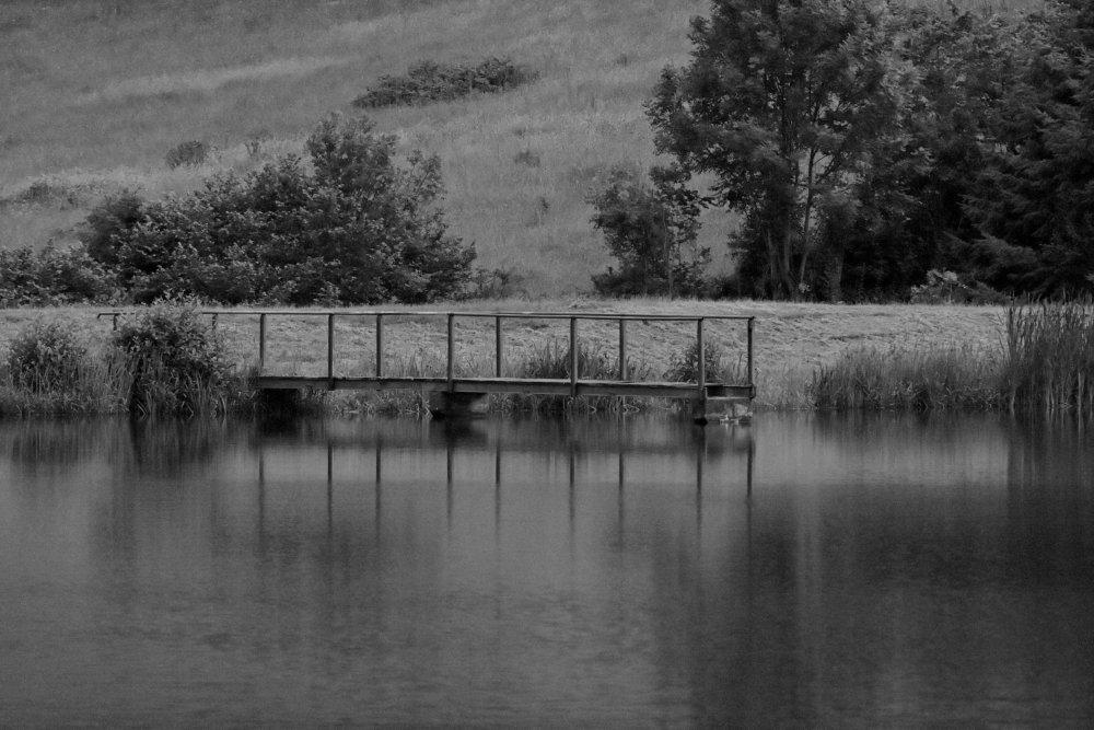 Un matin au bord de l'eau
