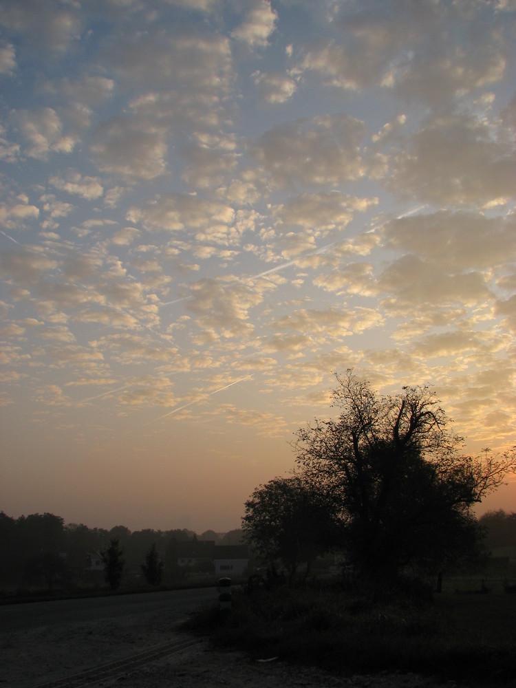 Un matin d'automne...