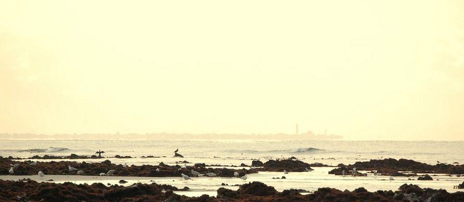 Un matin de novembre en baie d'Audierne