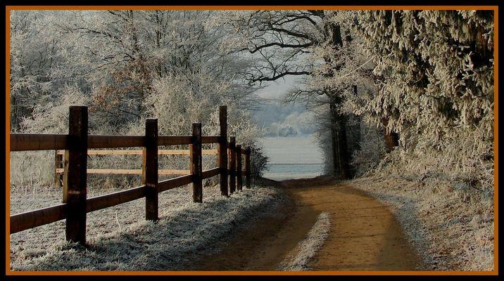 un matin frisquet, le chemin