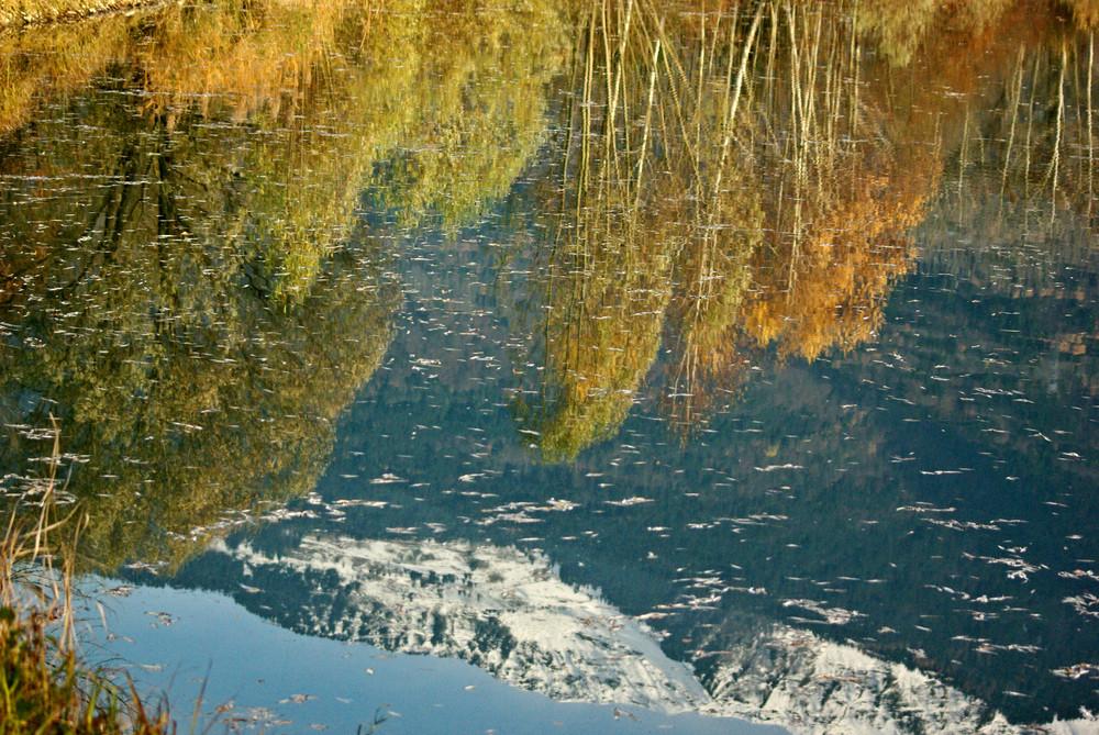 un miroir naturel