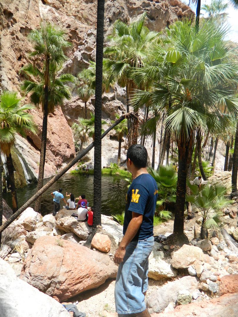 Un Oasis en Guaymas