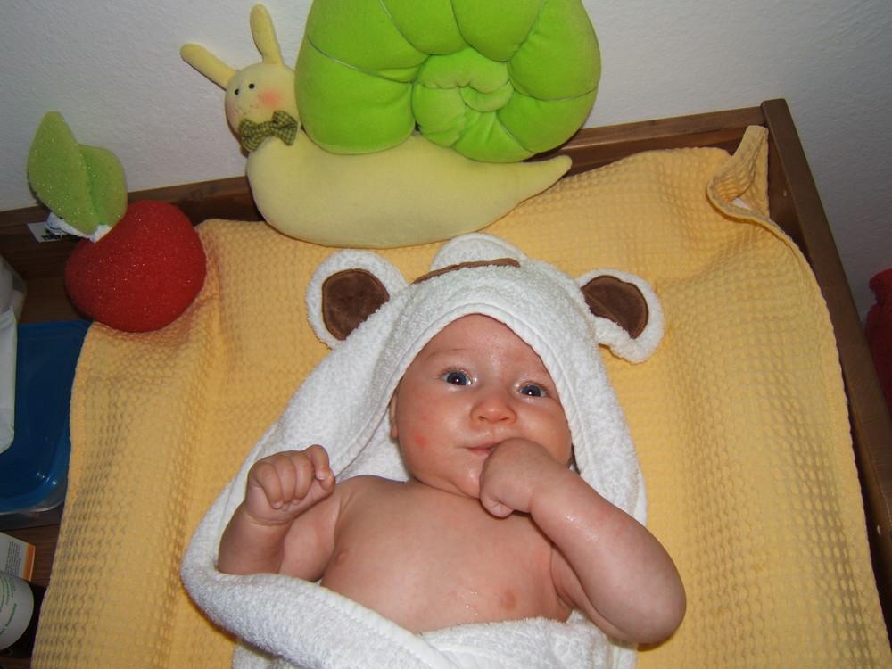 ....un orsetto bagnato