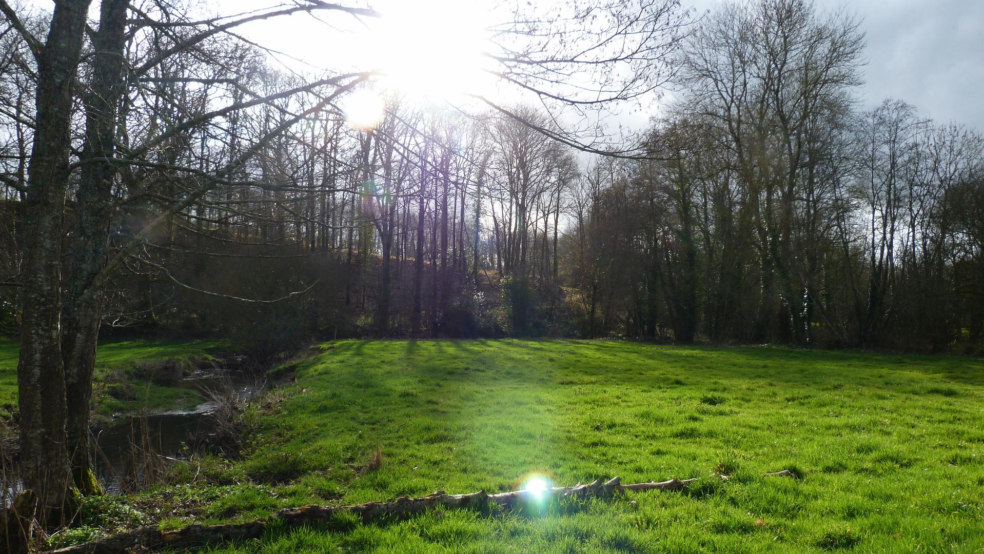 un paysage de campagne