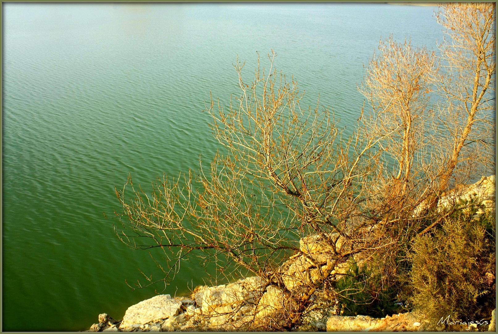 Un pedacito del Ebro