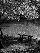 Un petit coin tranquille....