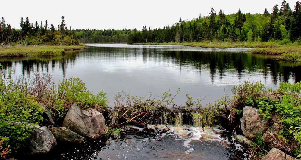 Un petit lac resté sauvage...