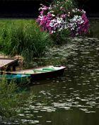 Un petit tour en barque avec moi ?