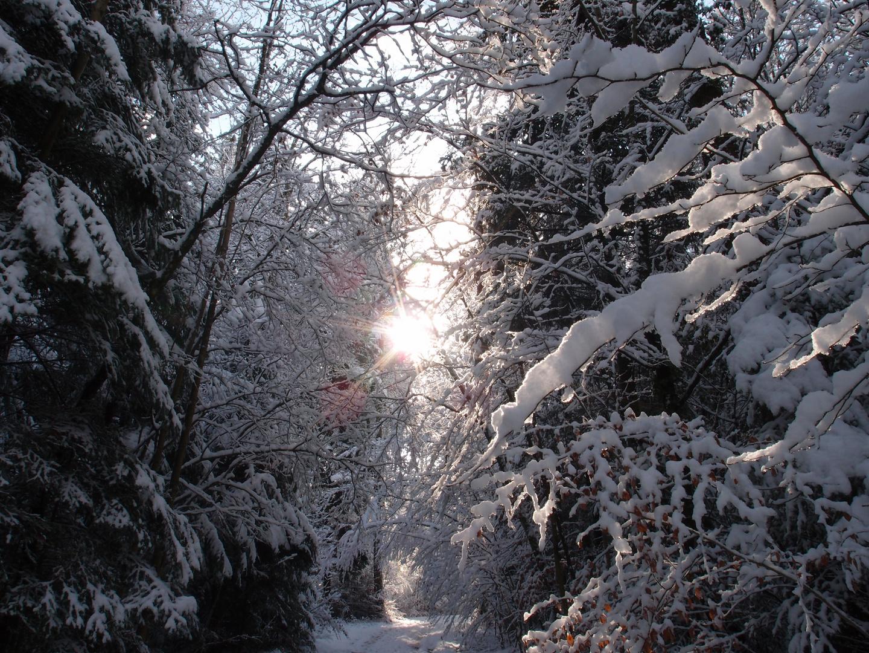Un poco de calor en medio de tanta nieve