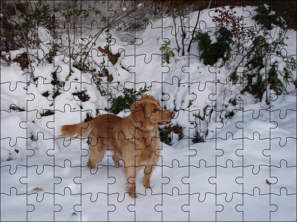 un puzzle de vanille