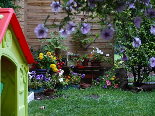 un recoin du jardin