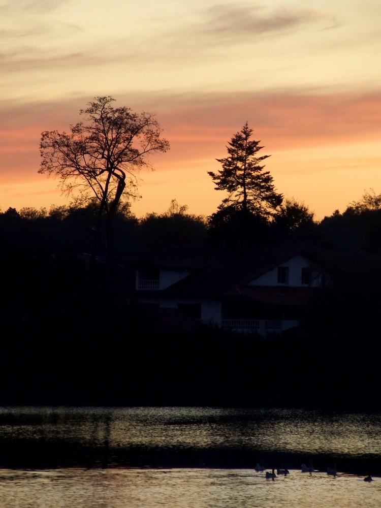 Un soir, au lac .