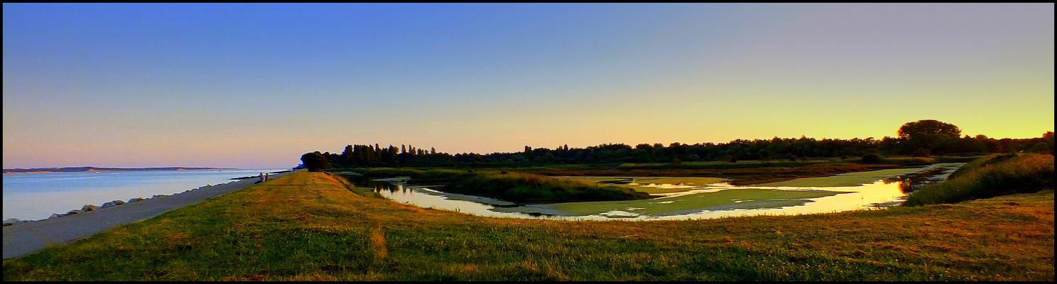 Un soir au marais des Bris