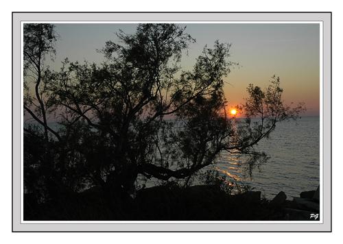 un soir d'automne en camargue