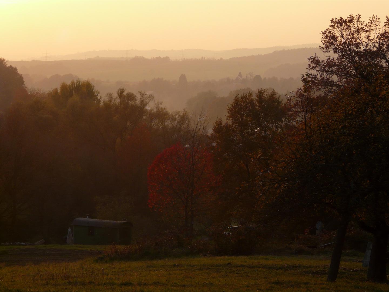 Un soir d'octobre dans le parc naturel du Spessart