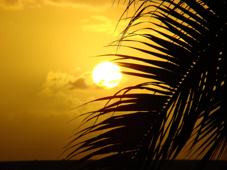 un soir sur la plage de moorea