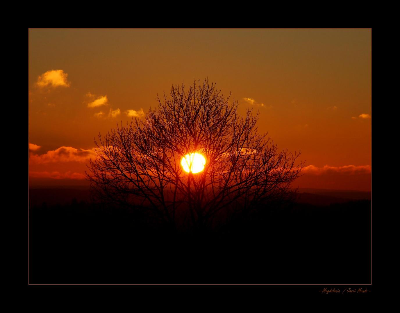 Un soir, un soleil