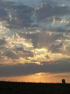 Un soleil se melant a des nuages pour ne faire qu'un tableau d'une vache