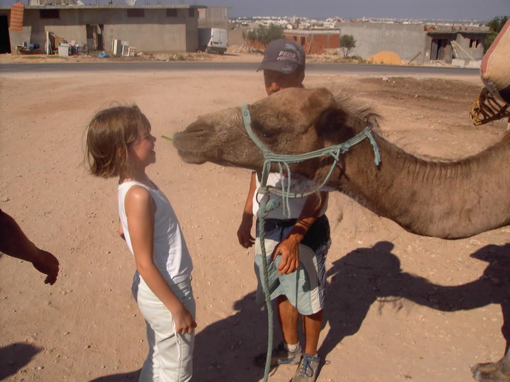 un sourire de chameau