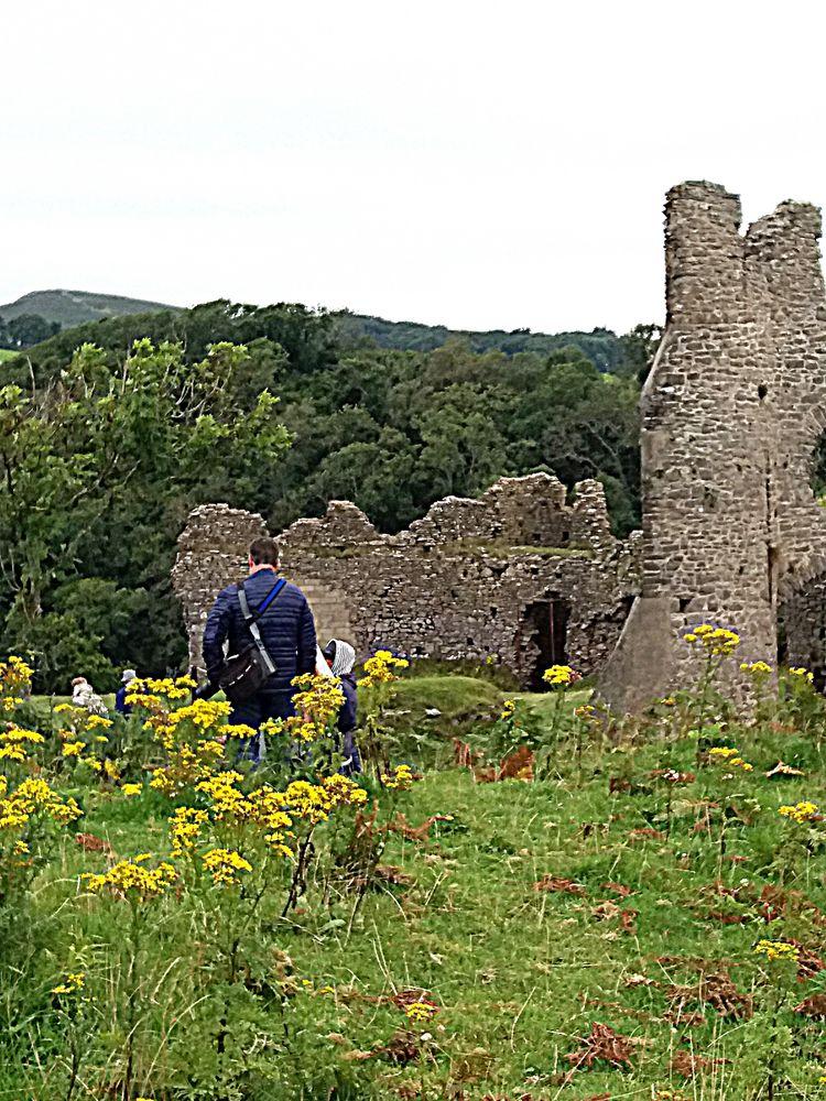UN tocco di colore..a Pennard castle...Galles