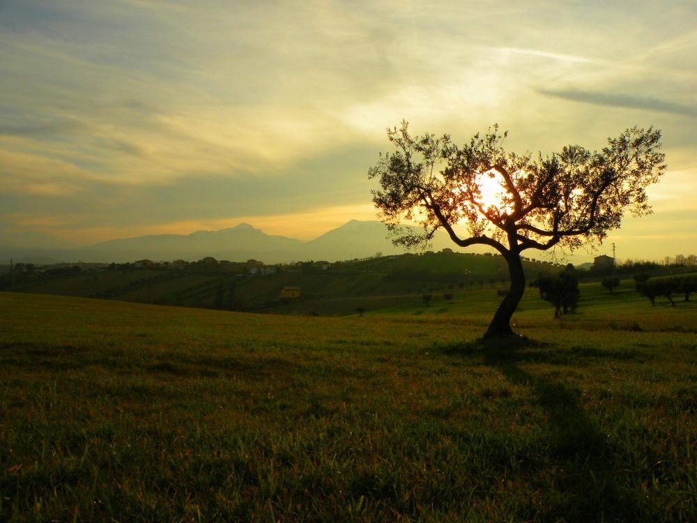 Un tramonto velato