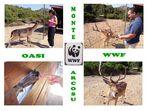 UNA GITA FUORI PORTA ALL'OASI FAUNISTICA DEL WWF DI MONTE ARCOSU (CA)