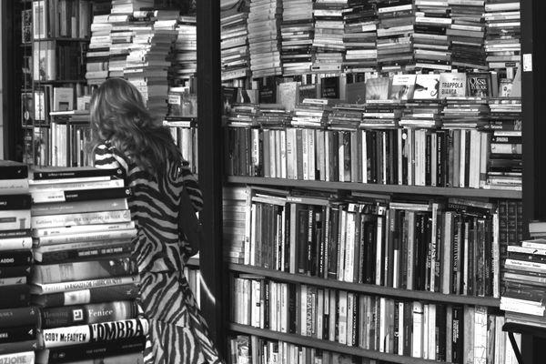 Una giungla di libri