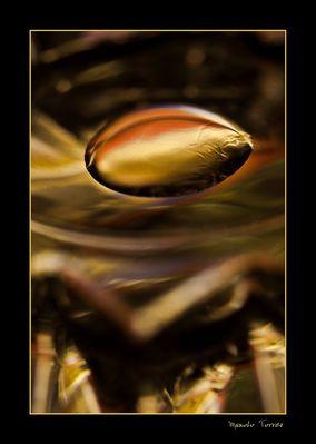 Una gota de oro flotando